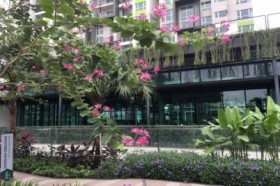 Vista Verde - Resort Lifestyle luxurious 1 bedroom apartment